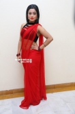 Actress Aasma Syed Stills (12)