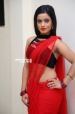 Actress Aasma Syed Stills (17)