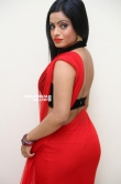 Actress Aasma Syed Stills (8)