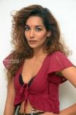 Actress Aditi Tiwari Stills (2)