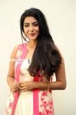 Aishwarya Lakshmi Stills (20)