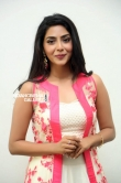 Aishwarya Lakshmi Stills (29)
