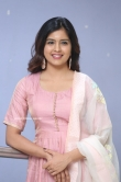 Amritha Aiyer at 30 Rojullo Preminchadam Ela Movie Press Meet (16)