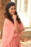 Amritha Aiyer at 30 Rojullo Preminchadam Ela Movie Press Meet (19)