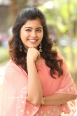 Amritha Aiyer at 30 Rojullo Preminchadam Ela Movie Press Meet (9)