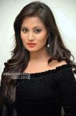 Anusha rai at gosi gang audio launch (9)