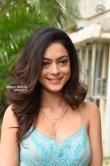 Anya Singh Stills (10)