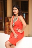 Ashima Narwal at killer movie pre release event (11)