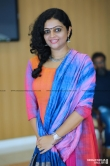 Aswathy Sreekanth at Rajith Menon wedding (2)