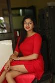 Sai Akshatha at Special Movie Success Meet (1)