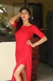 Sai Akshatha at Special Movie Success Meet (10)