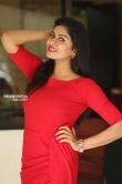 Sai Akshatha at Special Movie Success Meet (11)