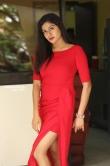 Sai Akshatha at Special Movie Success Meet (12)