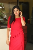 Sai Akshatha at Special Movie Success Meet (13)