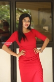 Sai Akshatha at Special Movie Success Meet (14)