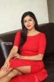 Sai Akshatha at Special Movie Success Meet (15)