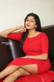 Sai Akshatha at Special Movie Success Meet (16)