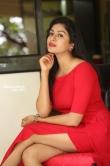 Sai Akshatha at Special Movie Success Meet (2)