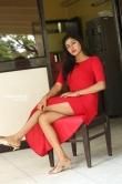 Sai Akshatha at Special Movie Success Meet (3)