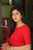 Sai Akshatha at Special Movie Success Meet (4)