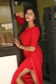 Sai Akshatha at Special Movie Success Meet (6)