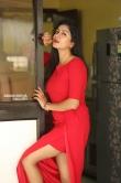 Sai Akshatha at Special Movie Success Meet (8)