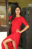 Sai Akshatha at Special Movie Success Meet (9)