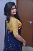 Alekhya Naidu in blue saree stills (12)