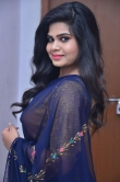 Alekhya Naidu in blue saree stills (13)