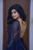 Alekhya Naidu in blue saree stills (9)