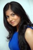 anaswara-kumar-at-namo-bhoothatma-press-meet-56442