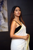 Anu Emmanuel in saree photos (3)