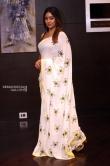 Anu Emmanuel in saree photos (8)