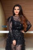Archana veda in black dress stills july 2019 (8)