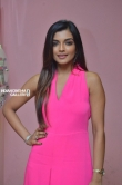 Ashna Zaveri at Brahma.Com Movie Audio Launch Stills (13)