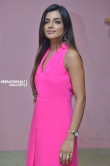 Ashna Zaveri at Brahma.Com Movie Audio Launch Stills (14)