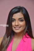 Ashna Zaveri at Brahma.Com Movie Audio Launch Stills (16)