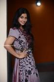 Athmiya at joseph movie 125 days celebration (14)