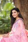 Avantika Mishra at Meeku Maathrame Chepta Success Meet (20)