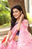 Avantika Mishra at Meeku Maathrame Chepta Success Meet (21)