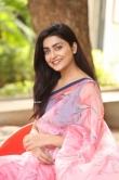 Avantika Mishra at Meeku Maathrame Chepta Success Meet (23)
