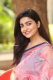 Avantika Mishra at Meeku Maathrame Chepta Success Meet (24)