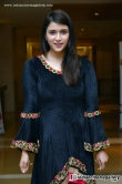 actress-mannara-chopra-latest-stills-141206
