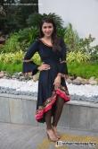 actress-mannara-chopra-latest-stills-22551