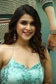 Mannara Chopra at SITA Movie Pre-Release Event (13)
