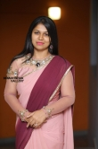Anjali Nair in saree stills (3)