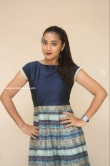 Bhanu Sri at EMI Movie First Look Launch Event (1)