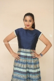 Bhanu Sri at EMI Movie First Look Launch Event (12)