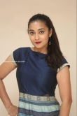 Bhanu Sri at EMI Movie First Look Launch Event (2)