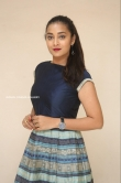 Bhanu Sri at EMI Movie First Look Launch Event (3)